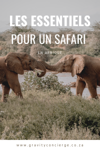 Les Essentiels pour un Safari en Afrique